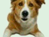 Symbian MMS-FX Zoom freeware